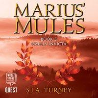 Marius' Mules III: Gallia Invicta - S.J.A. Turney