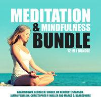 Meditation and Mindfulness Bundle: 12 in 1 Bundle - Adam Brown, Christopher P. Waller, Jampa Fujii Linn, George M Singer, Dr. Henriette Sparson, Marko D. Barbedwire