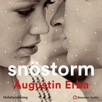 Snöstorm - Augustin Erba