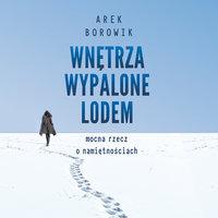 Wnętrza wypalone lodem - Arek Borowik