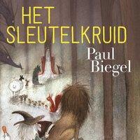 Het sleutelkruid - Paul Biegel
