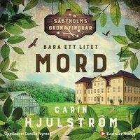 Bara ett litet mord - Carin Hjulström