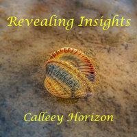 Revealing Insights - Calleey Horizon