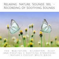 Relaxing Nature Sounds XXL (without music): Recording of Soothing Nature Sounds - Yella A. Deeken