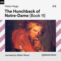 The Hunchback of Notre-Dame (Book 11) - Victor Hugo