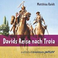 Davids Reise nach Troia - Matthias Raidt