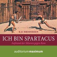 Ich bin Spartacus: Aufstand der Sklaven gegen Rom - Kai Brodersen
