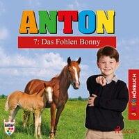 Anton - 7: Das Fohlen Bonny - Elsegret Ruge