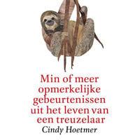 Min of meer opmerkelijke gebeurtenissen uit het leven van een treuzelaar - Cindy Hoetmer