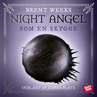 Night angel 1 - Som en skygge - Brent Weeks