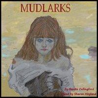 Mudlarks - Benita Cullingford