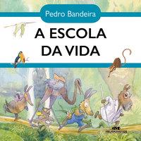 A escola da vida - Pedro Bandeira