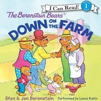 The Berenstain Bears Down on the Farm - Jan Berenstain, Stan Berenstain