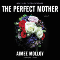 The Perfect Mother: A Novel - Aimee Molloy