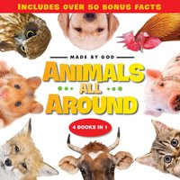 Animals All Around - Zondervan