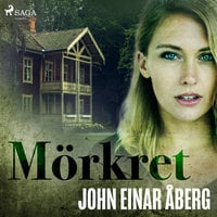 Mörkret - John Einar Åberg