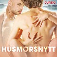 Husmorsnytt - Cupido