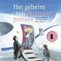 Het geheim van de stoere prinses - Anna Woltz