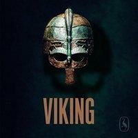 Viking - Findan - Gyldendal