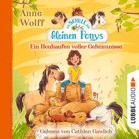 Die Schule der kleinen Ponys - Teil 1: Ein Heuhaufen voller Geheimnisse - Anne Wolff