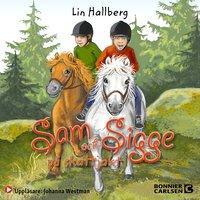Sam och Sigge på skattjakt - Lin Hallberg
