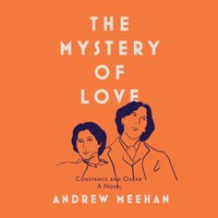 The Mystery Of Love - Andrew Meehan