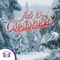 Feels Like Christmas - Kim Mitzo Thompson