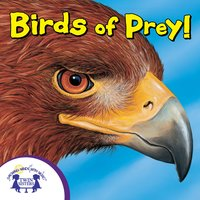 Know-It-Alls! Birds of Prey - Bendix Anderson