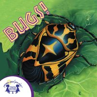 Know-It-Alls! Bugs - Christopher Nicholas