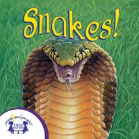 Know-It-Alls! Snakes - Christopher Nicholas