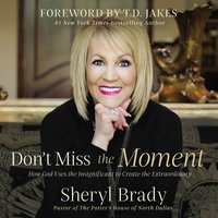 Don't Miss the Moment: How God Uses the Insignificant to Create the Extraordinary - Sheryl Brady