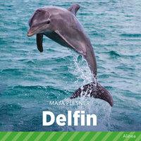 Delfin - Maja Plesner