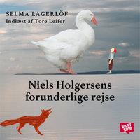 Niels Holgersens forunderlige rejse - Selma Lagerlöf