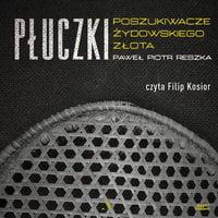 Płuczki. Poszukiwacze żydowskiego złota - Paweł Piotr Reszka