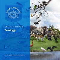 Zoology Audio Course - Centre of Excellence