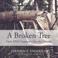 A Broken Tree - Stephen F. Anderson