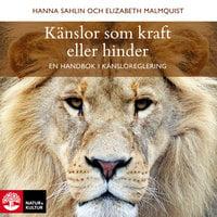 Känslor som kraft eller hinder : en handbok i känsloreglering - Elizabeth Malmquist, Hanna Sahlin