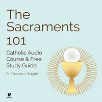 The Catholic Sacraments 101: Signs of God's Grace - Thomas J. Scirghi