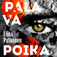 Palava poika - Liina Putkonen