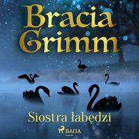 Siostra łabędzi - Bracia Grimm