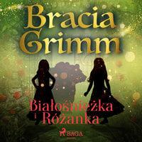 Białośnieżka i Różanka - Bracia Grimm