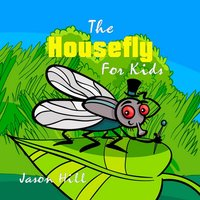 The Housefly for Kids - Jason Hill