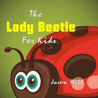Lady Beetle for Kids - Jason Hill