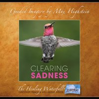 Clearing Sadness - Max Highstein
