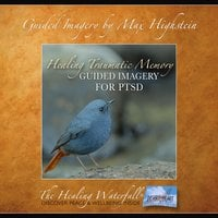 Guided Imagery for PTSD - Max Highstein
