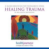 A Guided Meditation For Postraumatic Stress Healing Trauma - Belleruth Naparstek, Steven Mark Kohn
