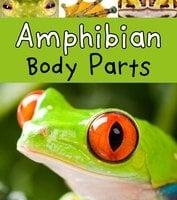 Amphibian Body Parts - Clare Lewis