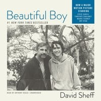 Beautiful Boy - David Sheff