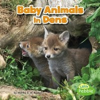 Baby Animals in Dens - Martha Rustad