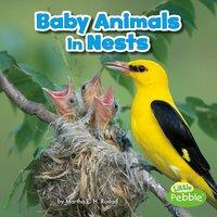 Baby Animals in Nests - Martha Rustad